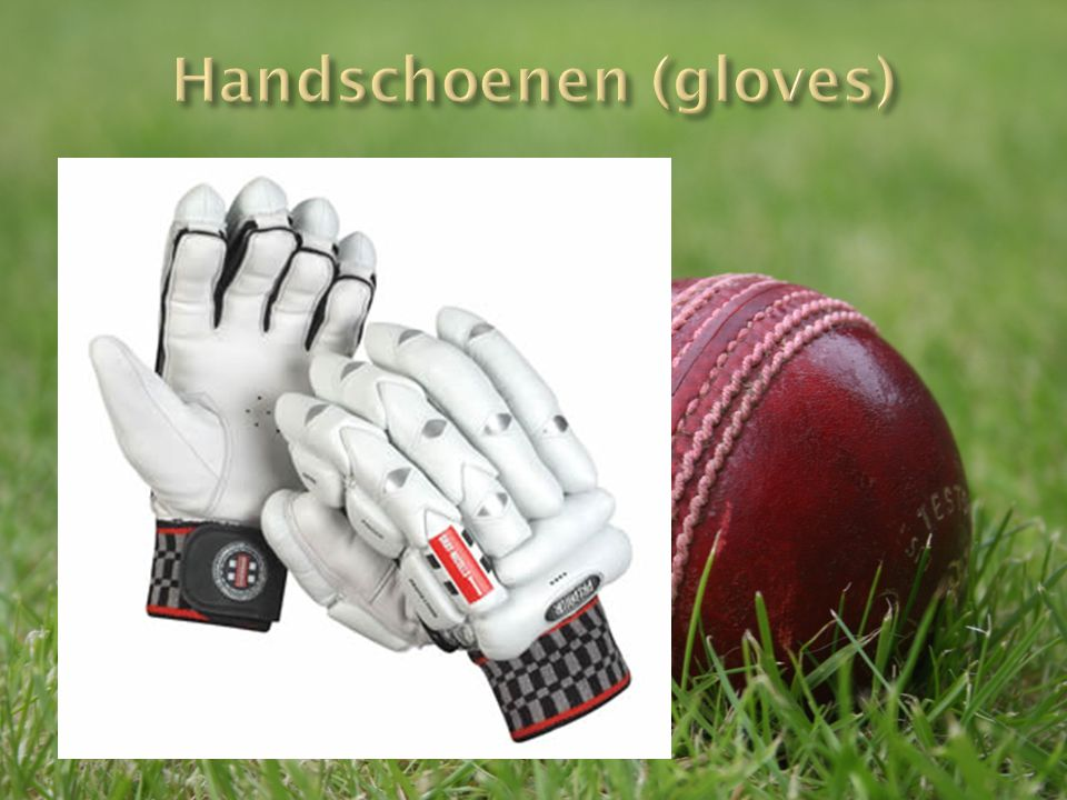 Handschoenen (gloves)