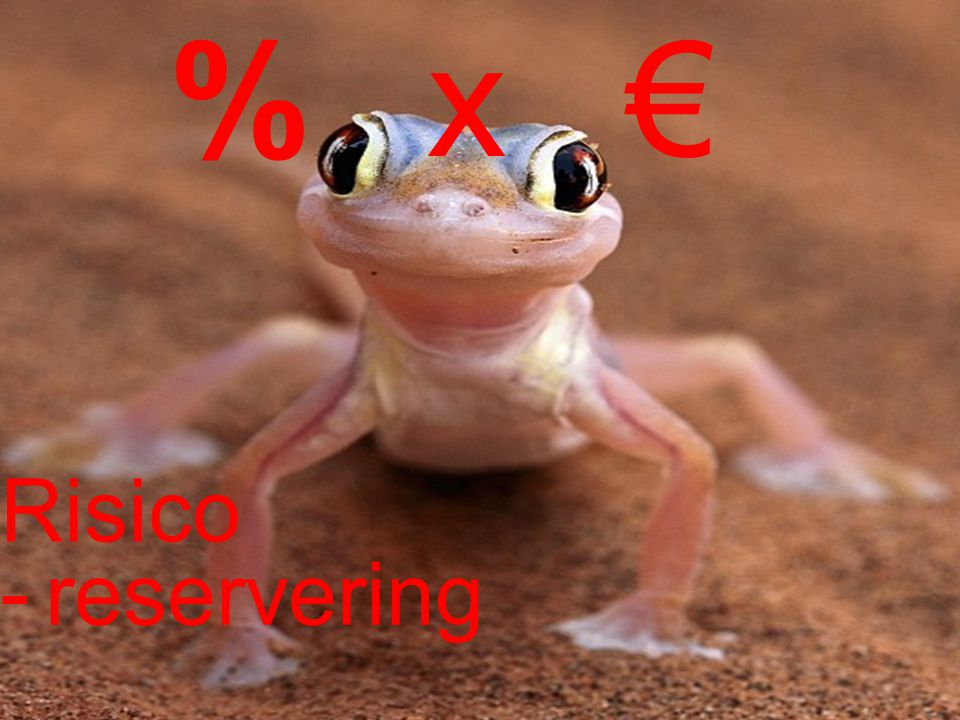 x € % Risico - reservering Over risico;'s gesproken.