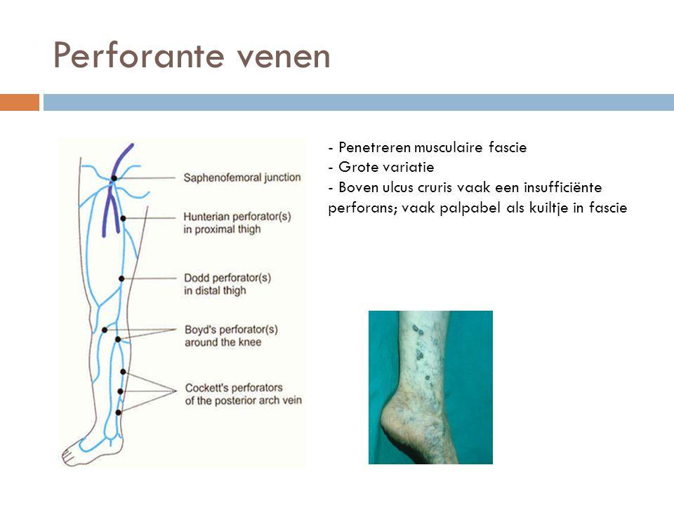 Veneus duplex onderzoek van de onderste extremiteiten - ppt video ...