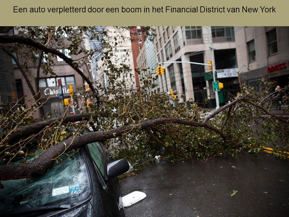 Een auto verpletterd door een boom in het Financial District van New York