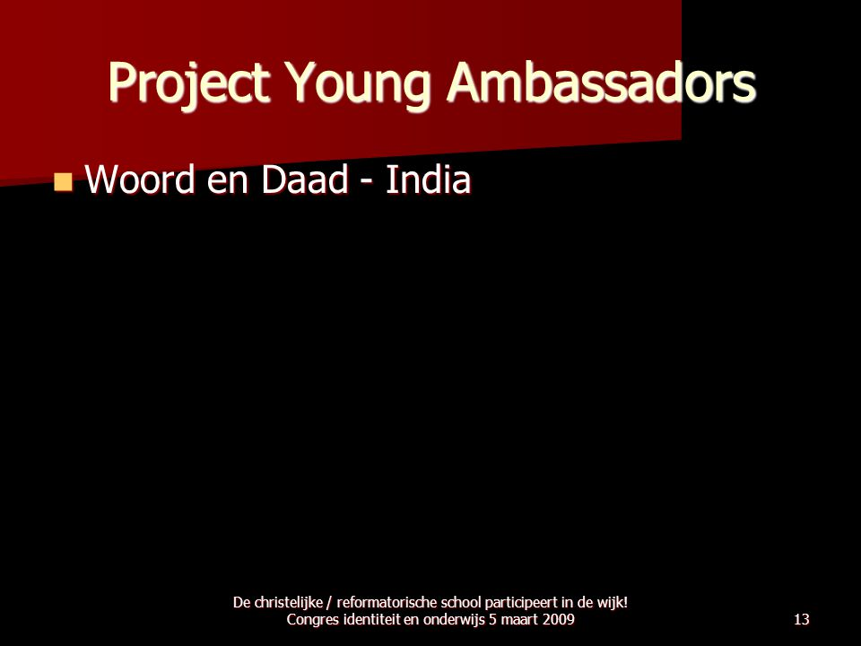 Project Young Ambassadors
