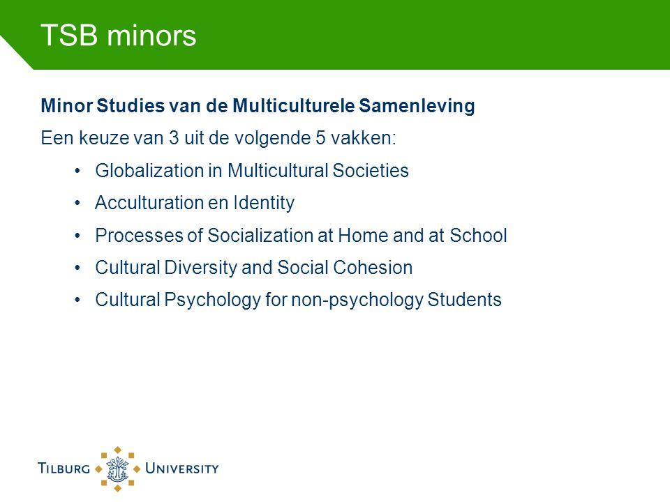 TSB minors Minor Studies van de Multiculturele Samenleving