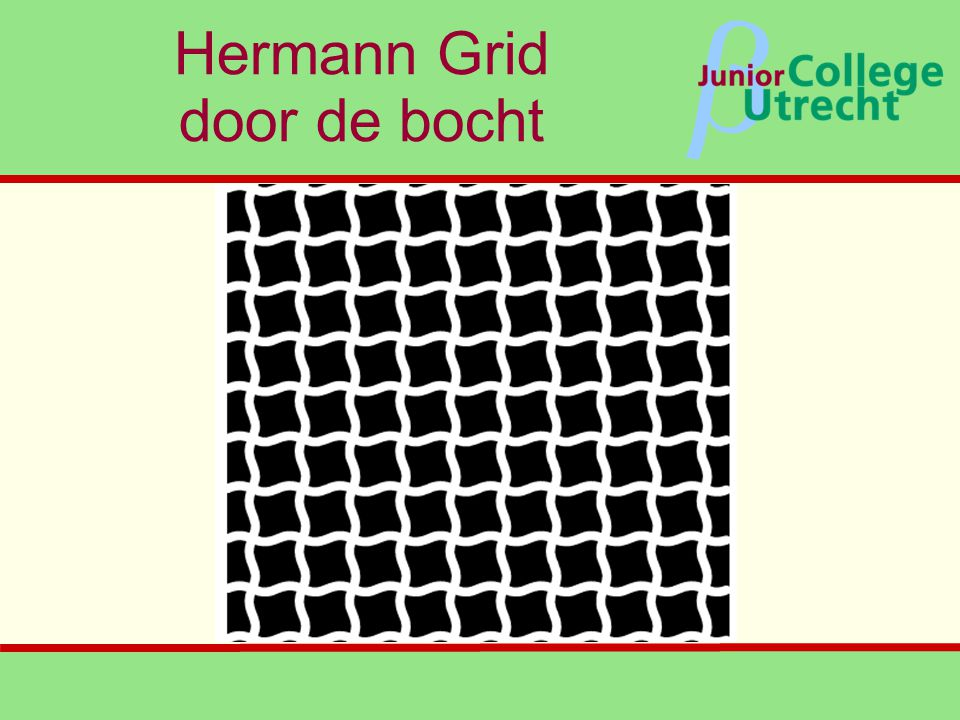 Hermann Grid door de bocht