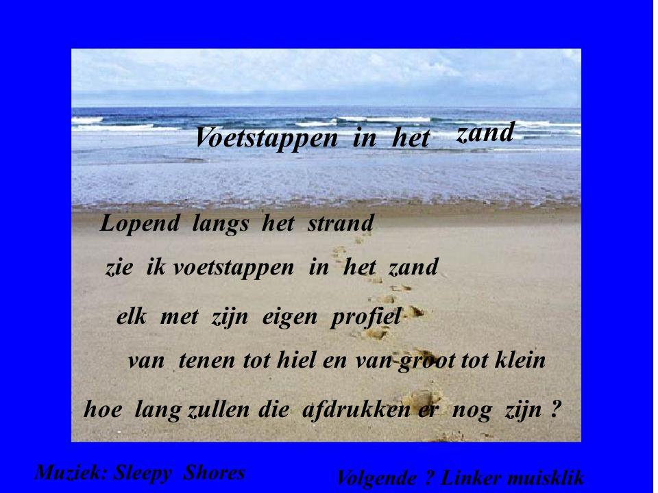 voetstappen in het zand gedicht