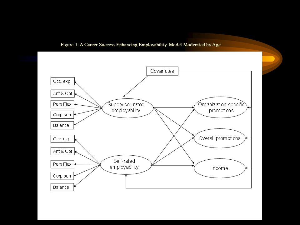 Figure 1: A Career Success Enhancing Employability Model Moderated by Age