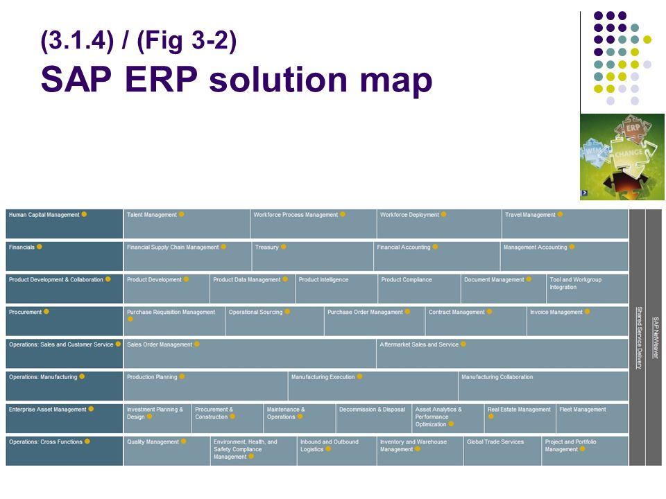 (3.1.4) / (Fig 3-2) SAP ERP solution map