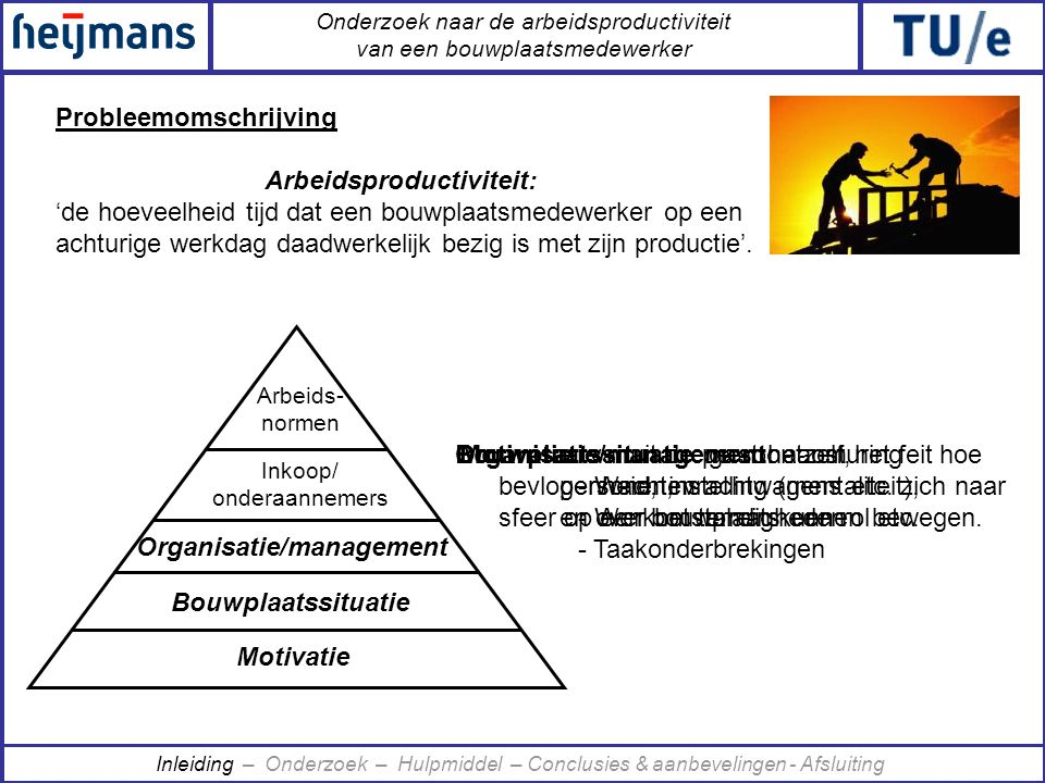 Organisatie/management