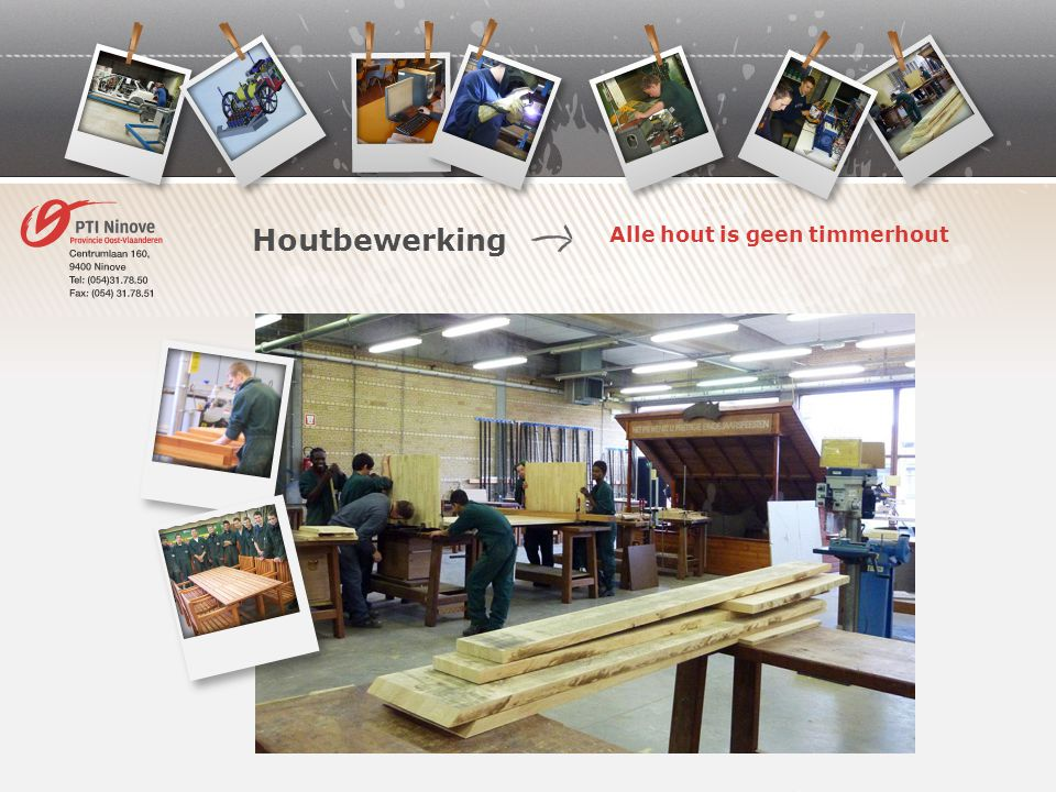 Alle hout is geen timmerhout