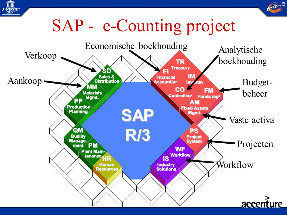 SAP - e-Counting project