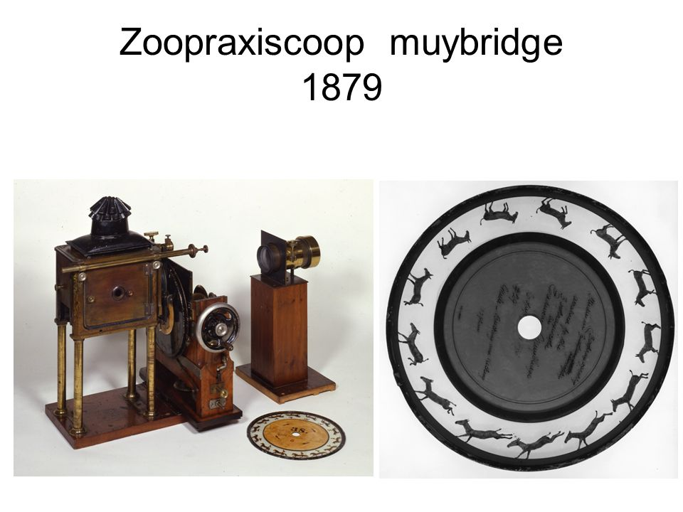 Zoopraxiscoop muybridge 1879