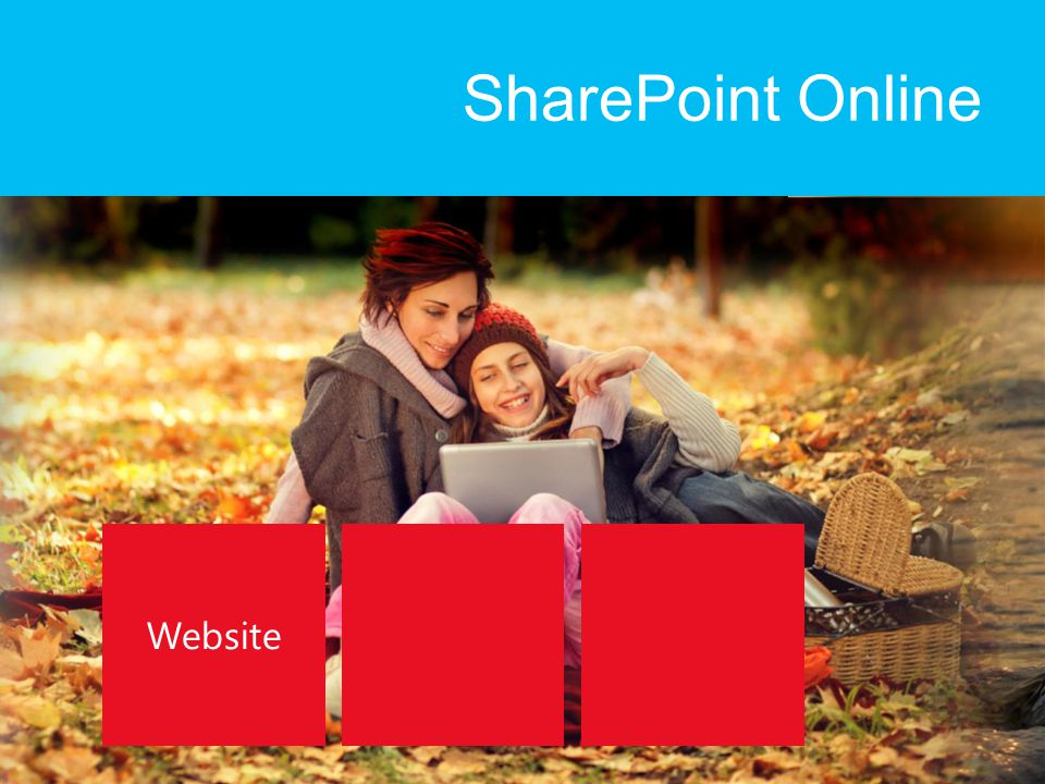 SharePoint Online Website