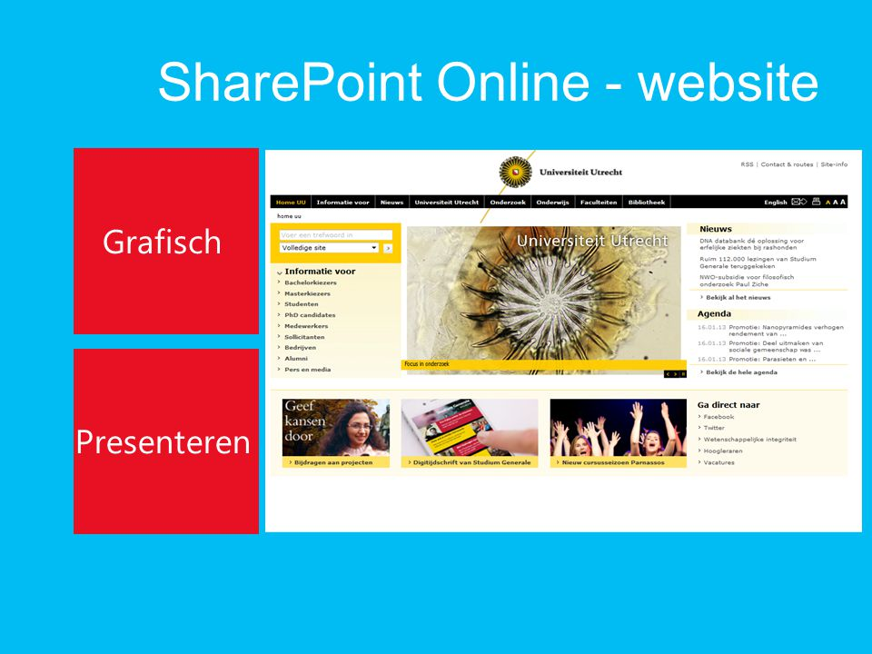 SharePoint Online - website