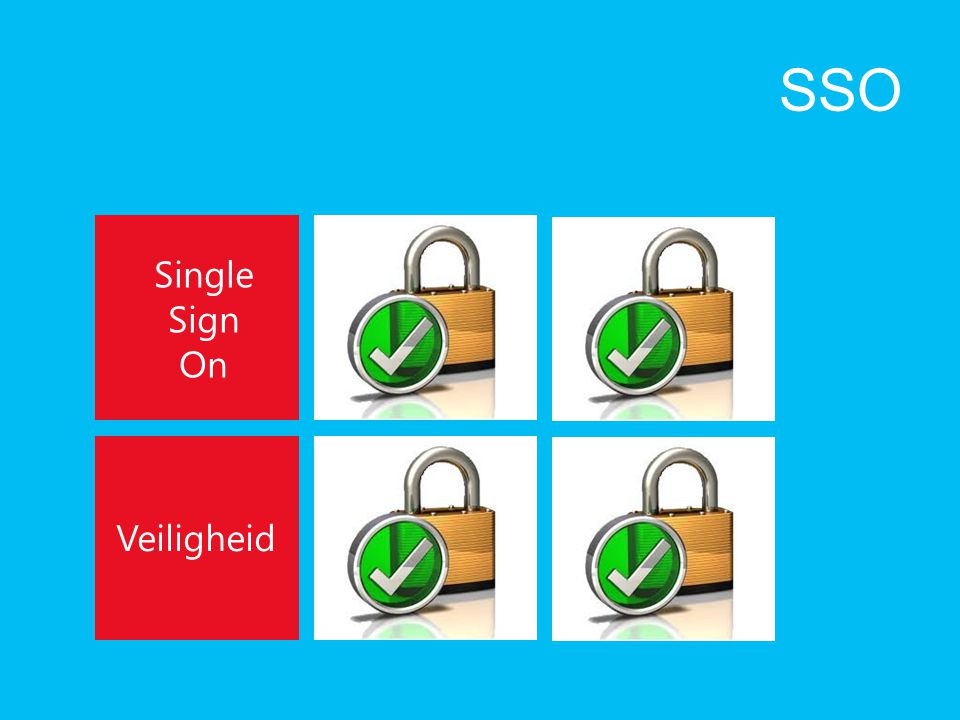 SSO Single Sign On Veiligheid