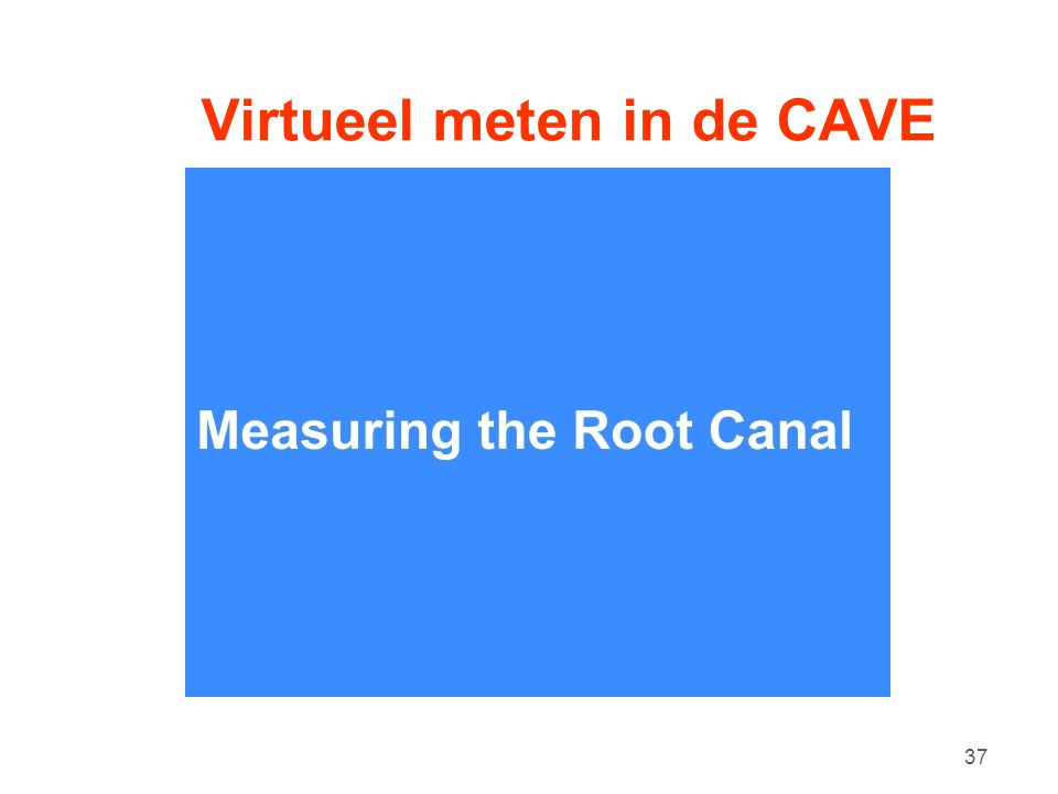 Virtueel meten in de CAVE