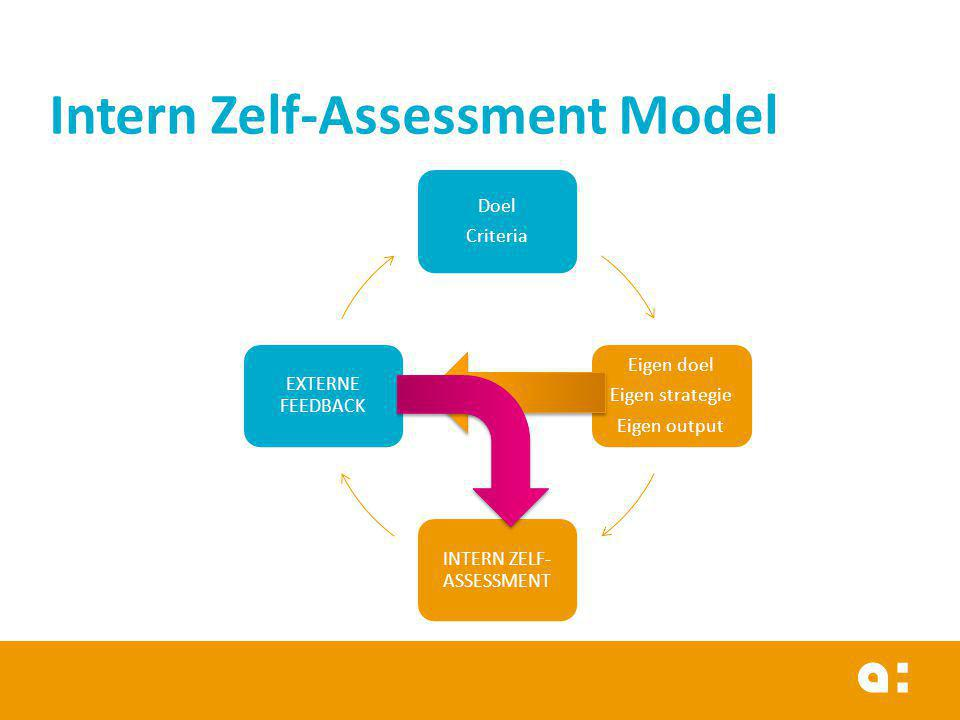 Intern Zelf-Assessment Model