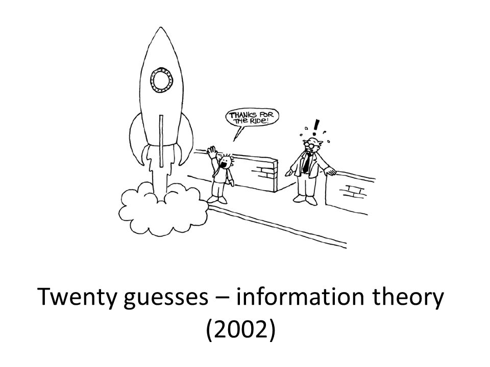 Twenty guesses – information theory (2002)