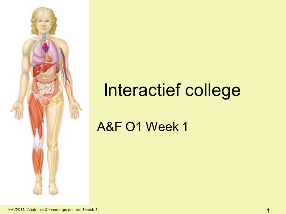 Interactief college A&F O1 Week 1 AFI1