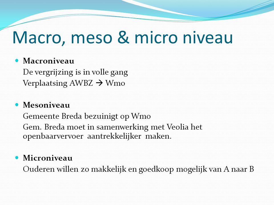 Microniveau Mesoniveau Macroniveau Zorg.Verbinding Van De Theorie Naar Project Gemeente Breda Ppt