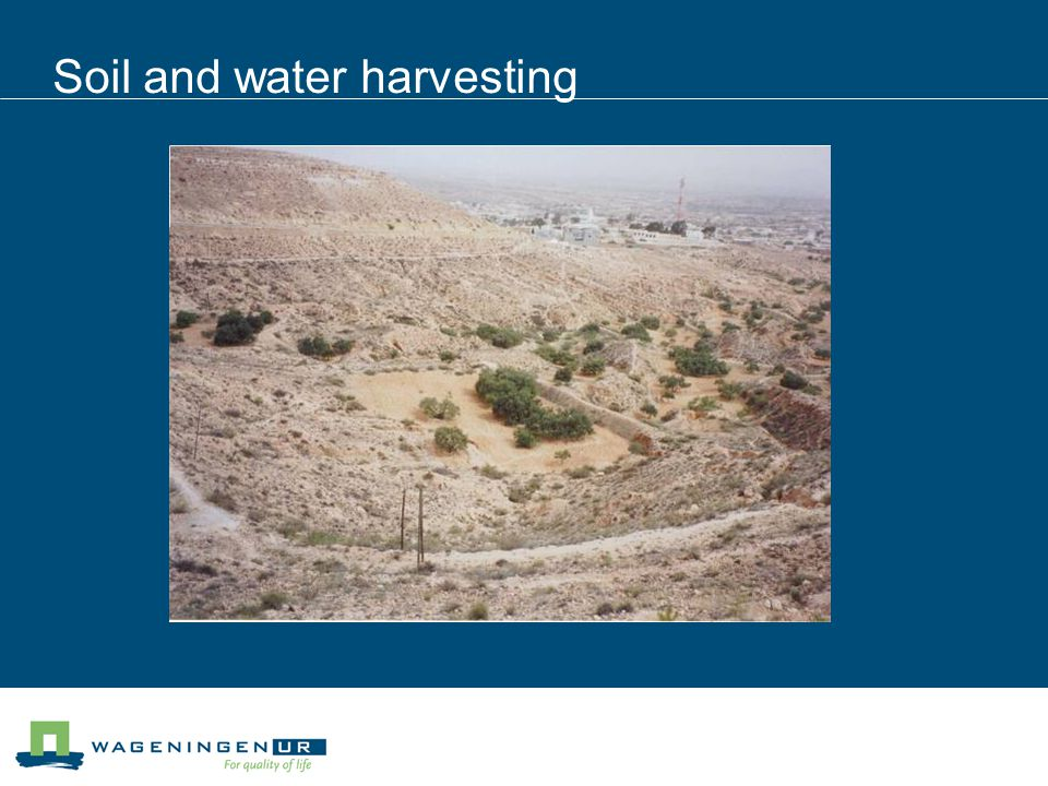 Soil and water harvesting