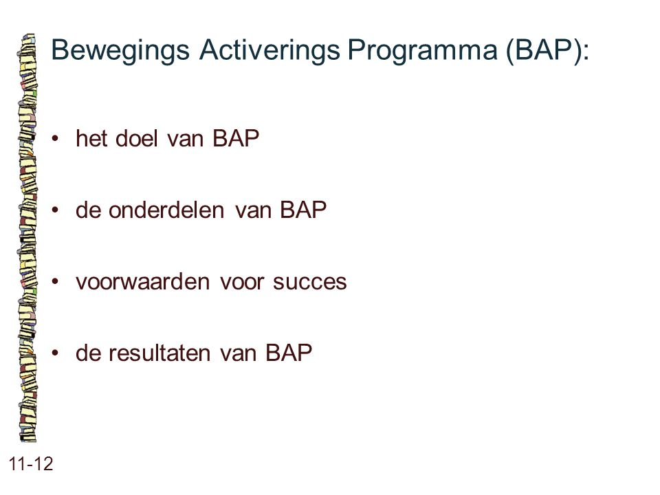 Bewegings Activerings Programma (BAP):