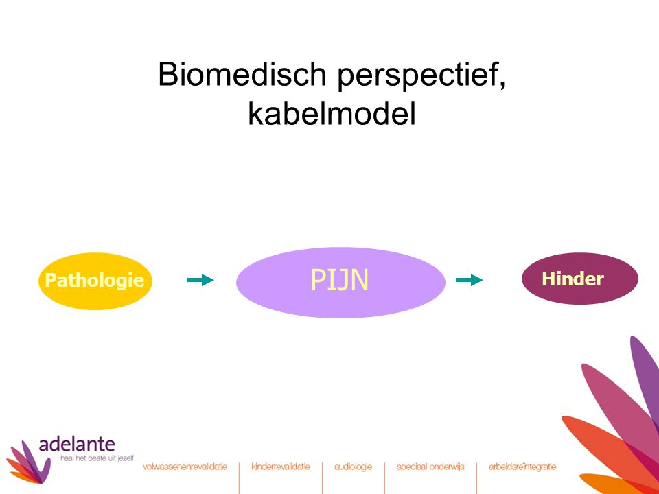 Biomedisch perspectief, kabelmodel