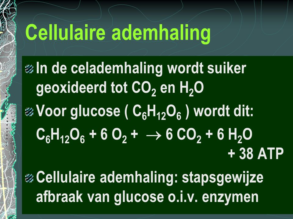 Cellulaire ademhaling
