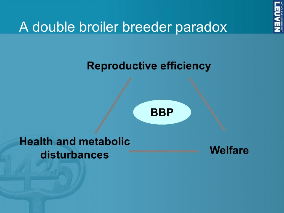 A double broiler breeder paradox