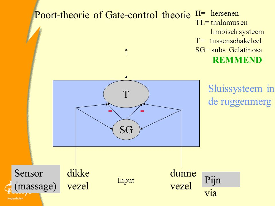 - - Poort-theorie of Gate-control theorie T Sluissysteem in