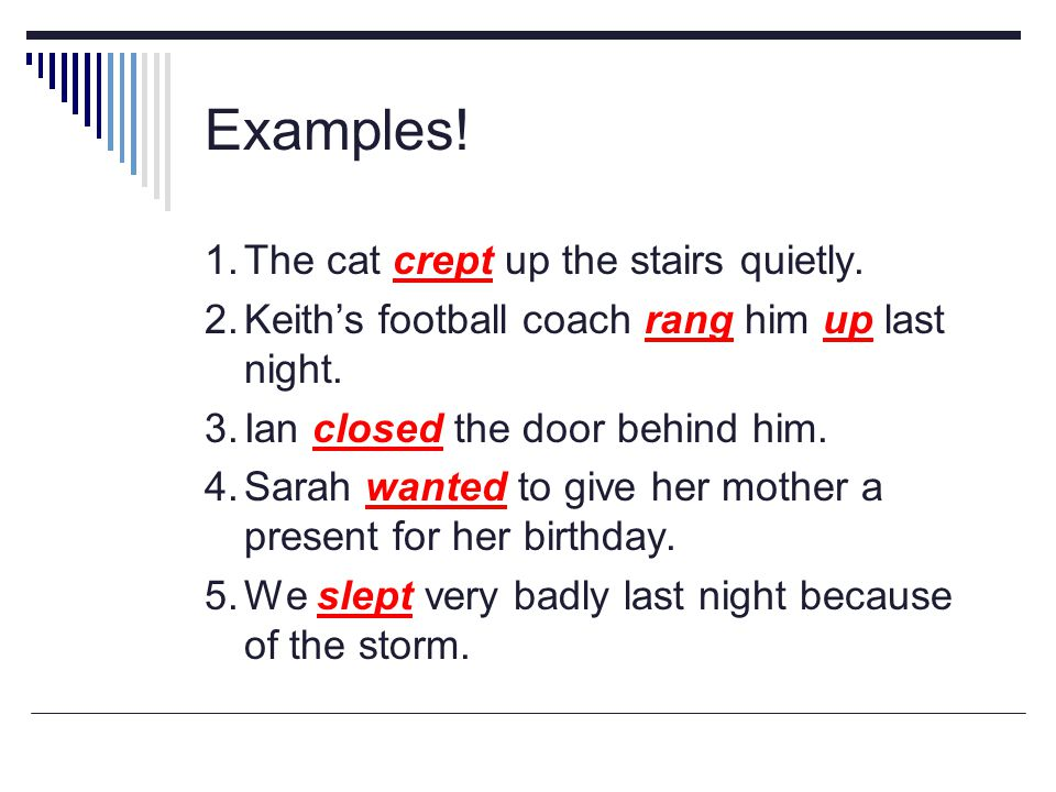Examples! 1. The cat crept up the stairs quietly.