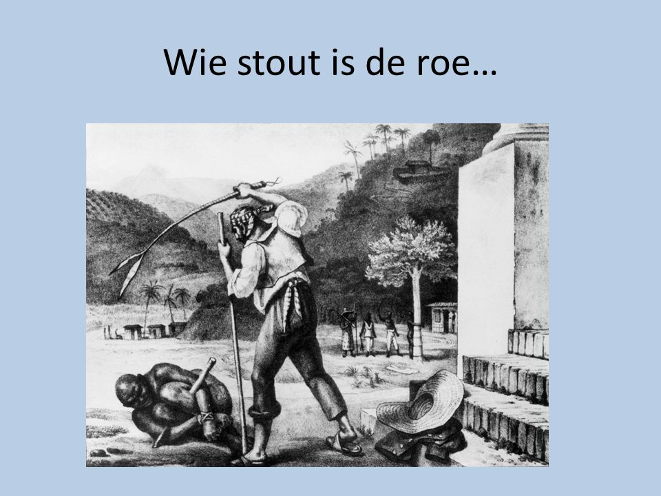 Wie stout is de roe…