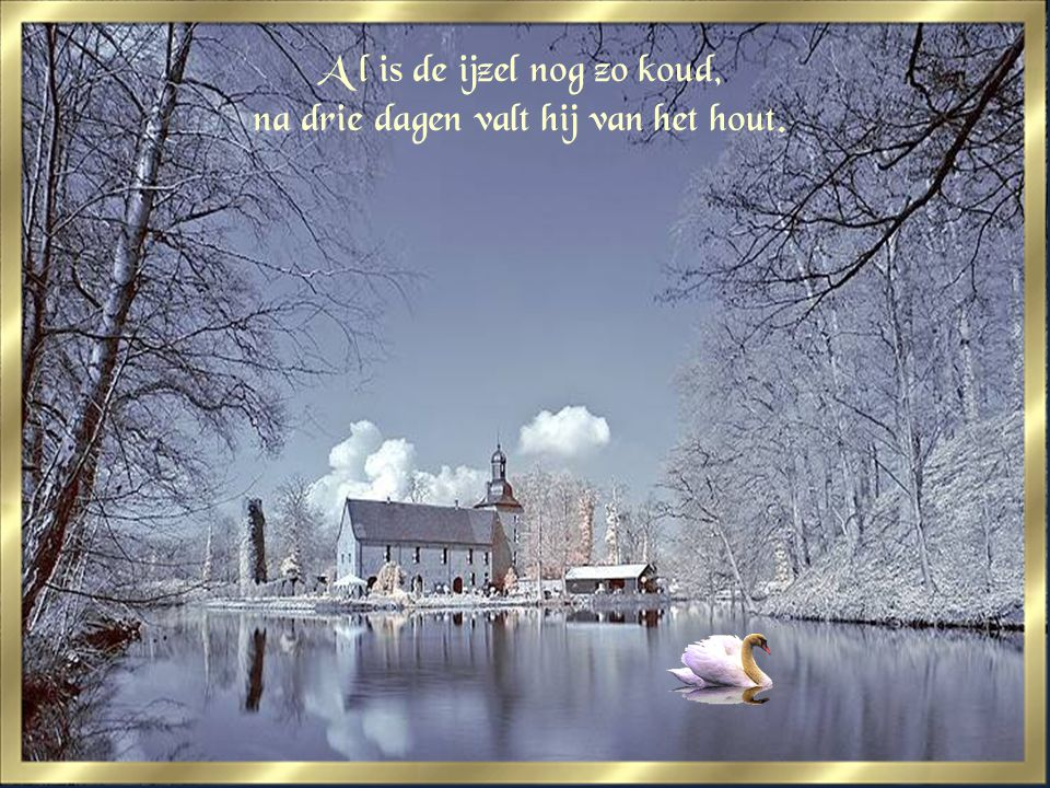 spreuken over winter Winter spreuken 4/04/ : ppt video online download spreuken over winter