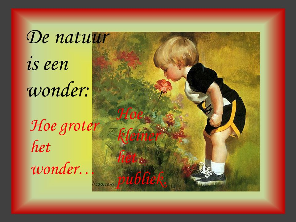 De natuur is een wonder: