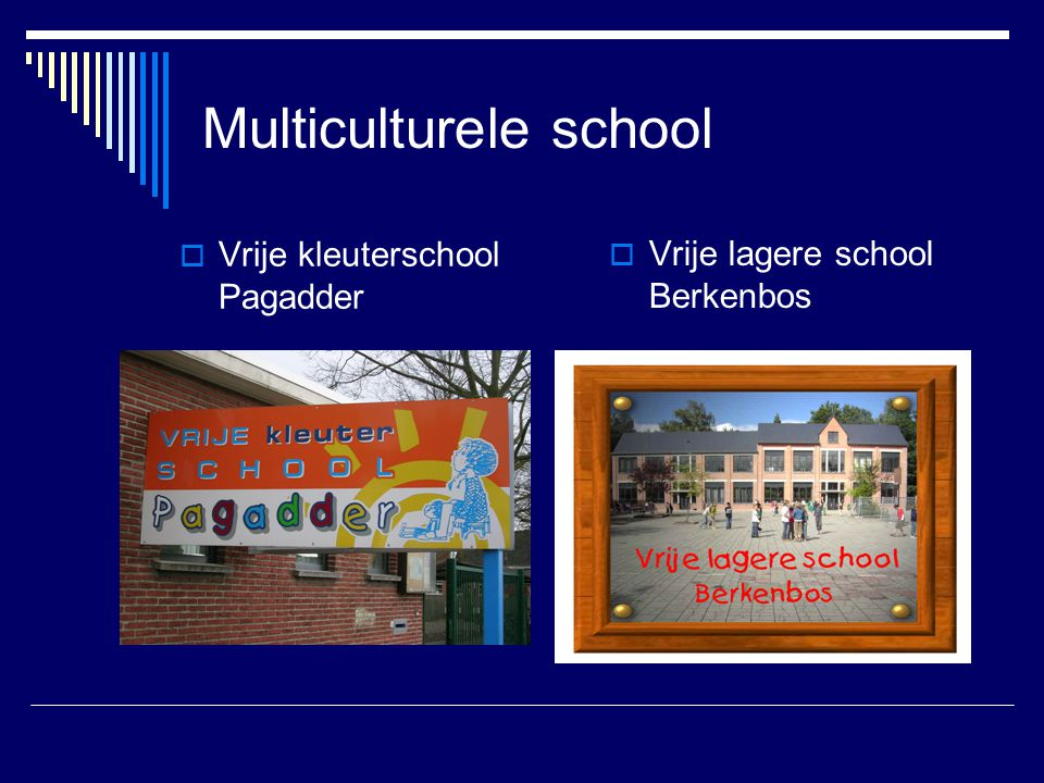 Multiculturele school