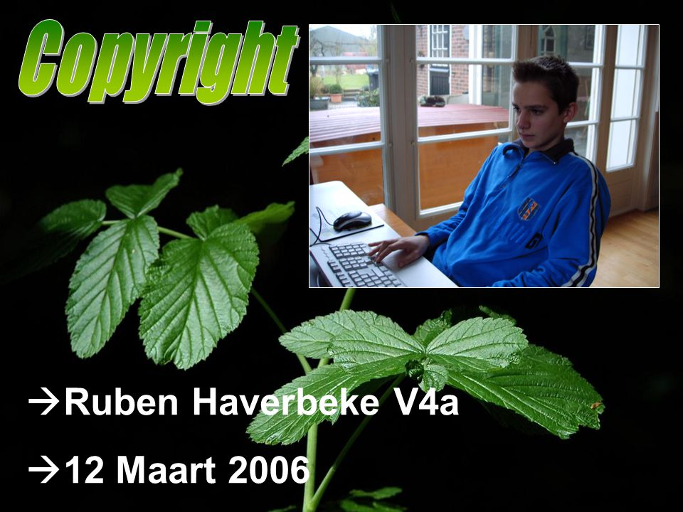 Copyright Ruben Haverbeke V4a 12 Maart 2006