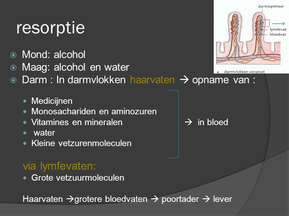 resorptie via lymfevaten: Mond: alcohol Maag: alcohol en water