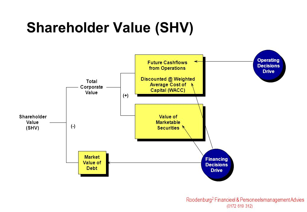 Shareholder Value (SHV)