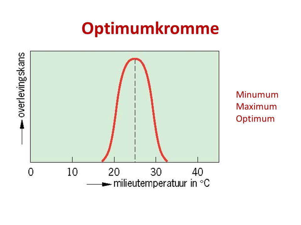 Optimumkromme Minumum Maximum Optimum