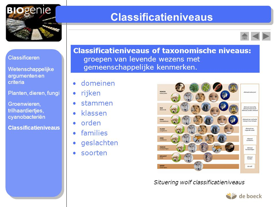 Classificatieniveaus