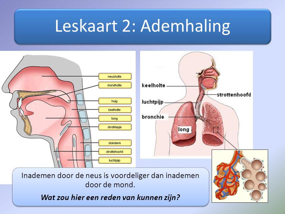 Inhoud les Herhaling Uitleg/ opdrachten Huiswerk. - ppt video online ...