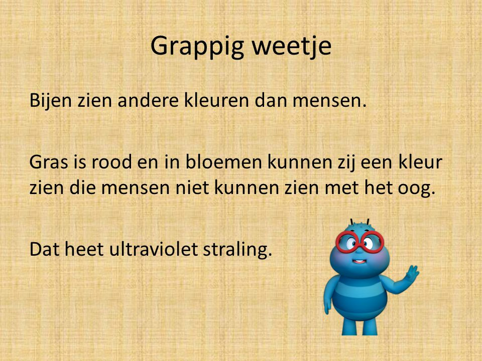 Grappig weetje