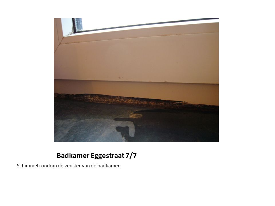 Badkamer eggestraat het rolgordijn in de badkamer ziet er uit