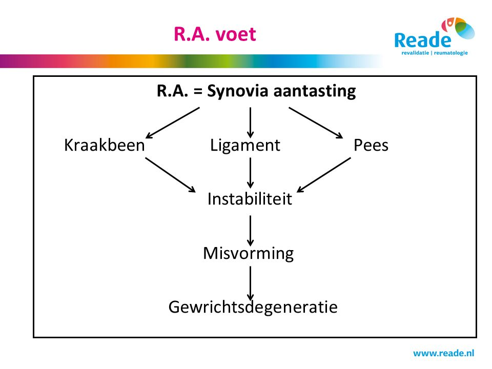 R.A. voet R.A.