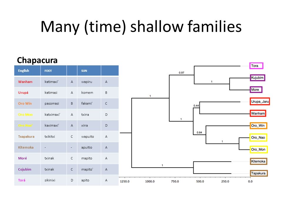 Many (time) shallow families