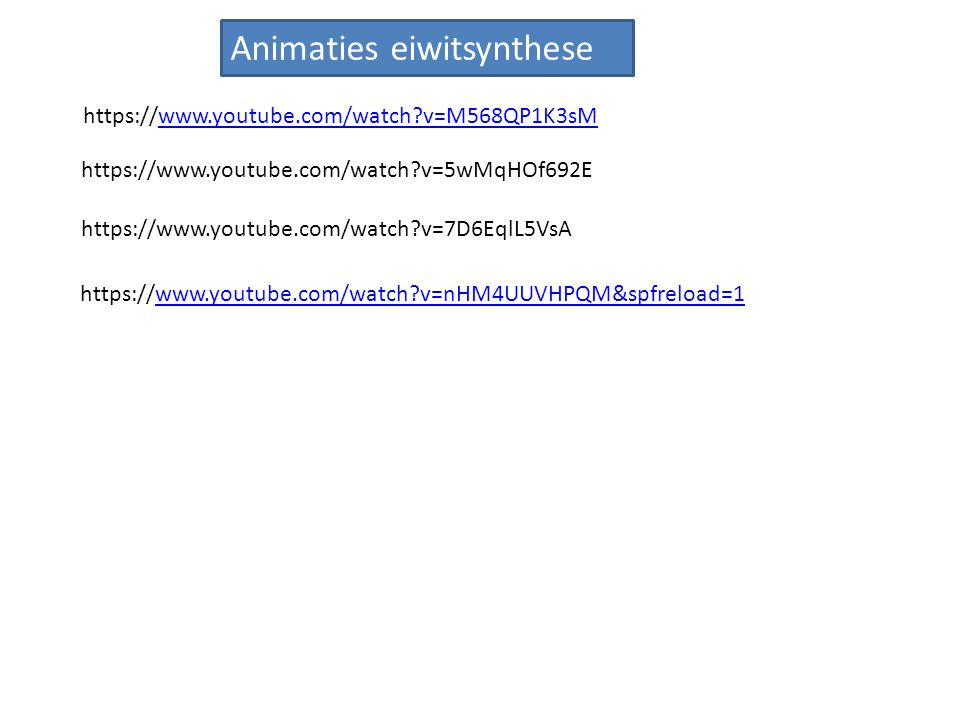 Animaties eiwitsynthese