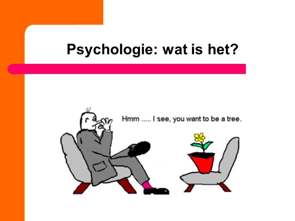 Stromingen in de psychologie hoorcollege 1 ppt download for Psychodynamische benadering